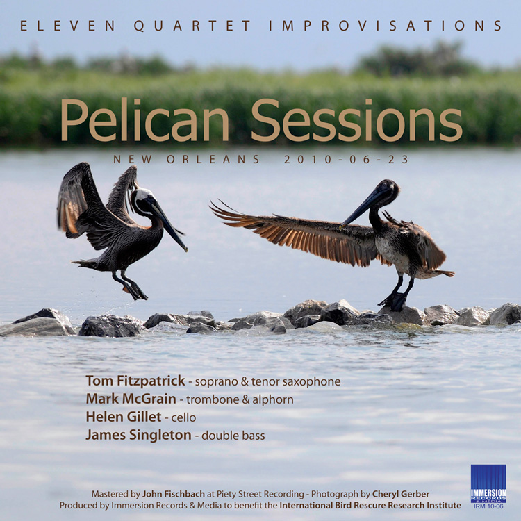 Fitzpatrick-McGrain-Gillet-Singleton: Pelican Sessions - Immersion Records 2011